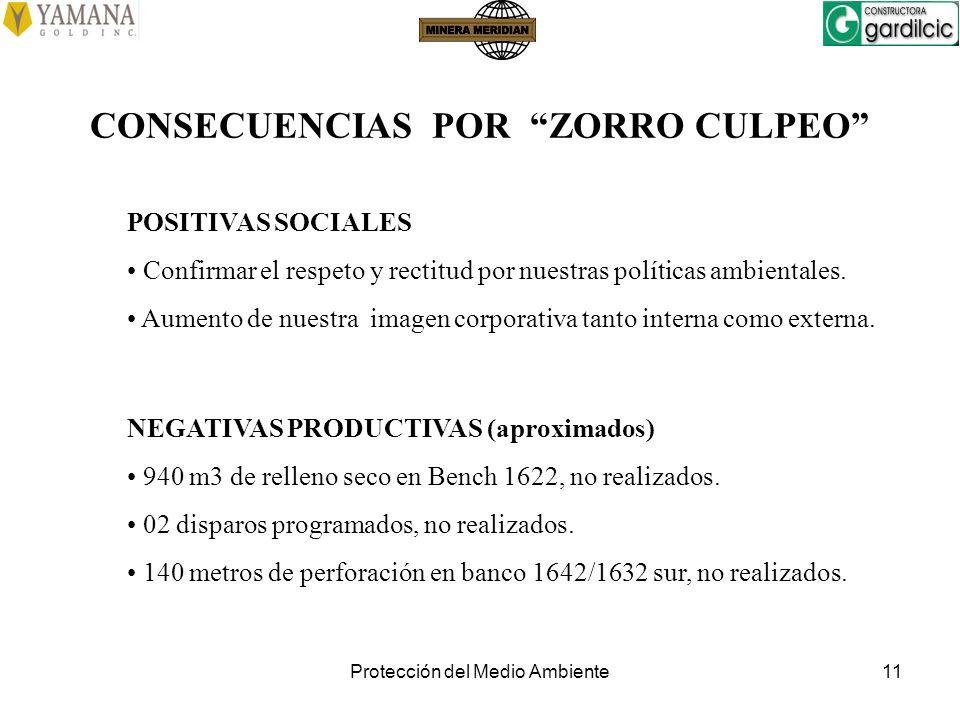 Protección del Medio Ambiente11 CONSECUENCIAS POR ZORRO CULPEO NEGATIVAS PRODUCTIVAS (aproximados) 940 m3 de relleno seco en Bench 1622, no realizados