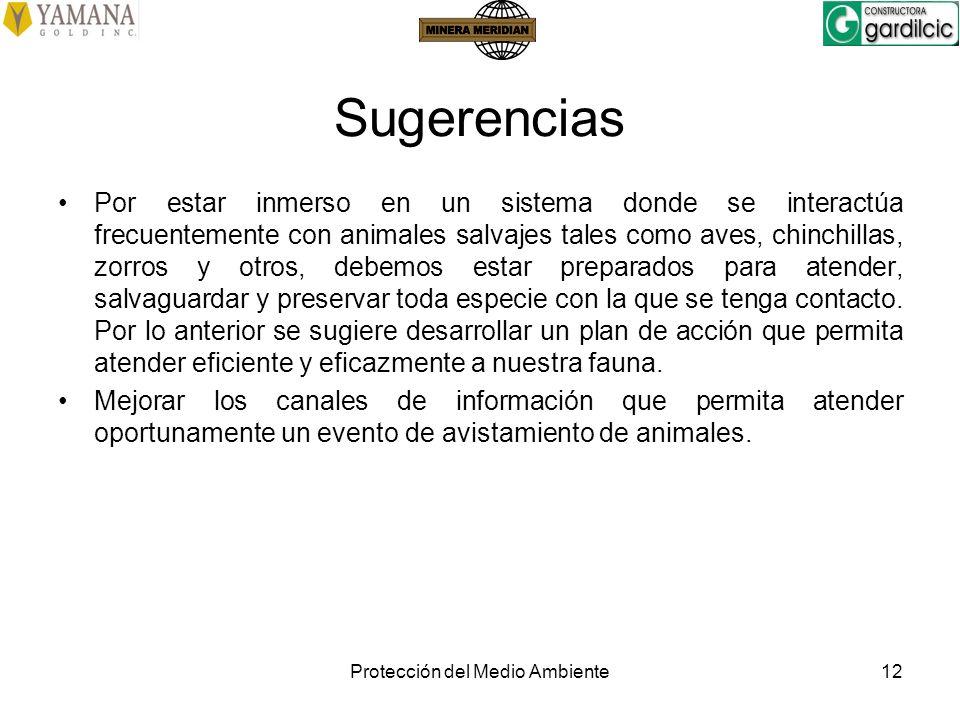Protección del Medio Ambiente12 Sugerencias Por estar inmerso en un sistema donde se interactúa frecuentemente con animales salvajes tales como aves,