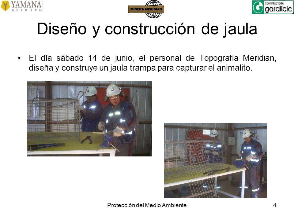 Protección del Medio Ambiente4 Diseño y construcción de jaula El día sábado 14 de junio, el personal de Topografía Meridian, diseña y construye un jau
