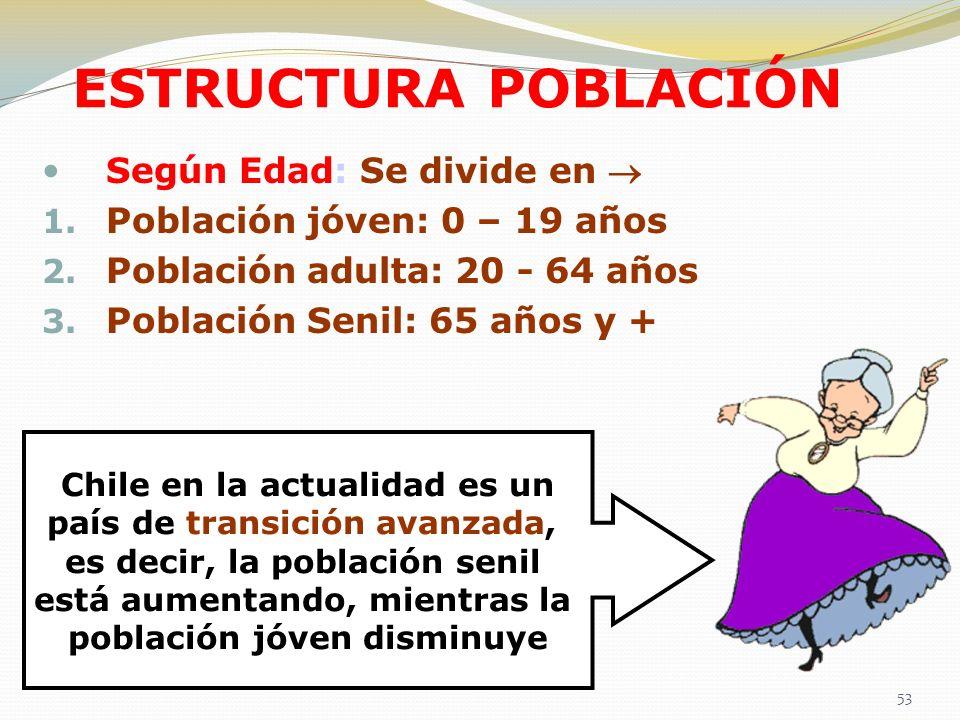 ESTRUCTURA POBLACIÓN Según Edad: Se divide en 1. Población jóven: 0 – 19 años 2. Población adulta: 20 - 64 años 3. Población Senil: 65 años y + Chile