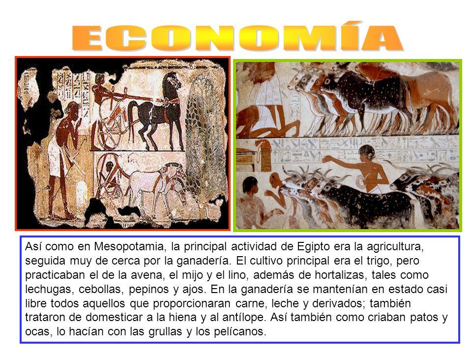 Así como en Mesopotamia, la principal actividad de Egipto era la agricultura, seguida muy de cerca por la ganadería. El cultivo principal era el trigo