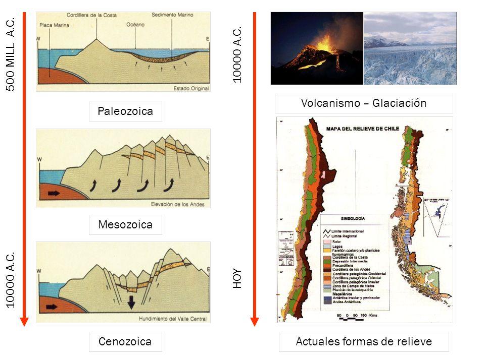 Paleozoica Cenozoica Mesozoica Volcanismo – Glaciación Actuales formas de relieve 10000 A.C. 500 MILL A.C. HOY 10000 A.C.