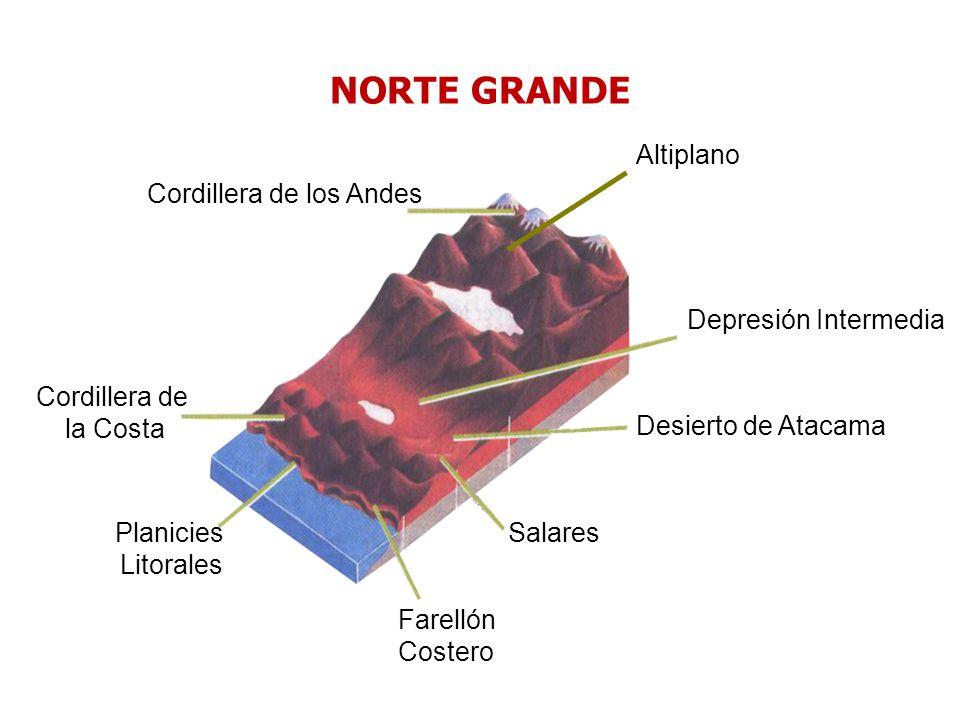 Depresión Intermedia Cordillera de los Andes Farellón Costero Planicies Litorales Cordillera de la Costa Desierto de Atacama Salares Altiplano NORTE G