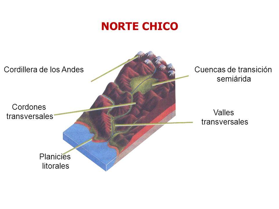 Cordillera de los Andes Cuencas de transición semiárida Cordones transversales Valles transversales Planicies litorales NORTE CHICO