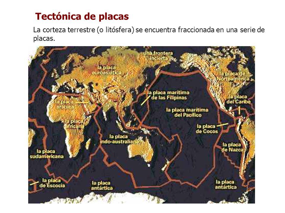 Tectónica de placas La corteza terrestre (o litósfera) se encuentra fraccionada en una serie de placas.
