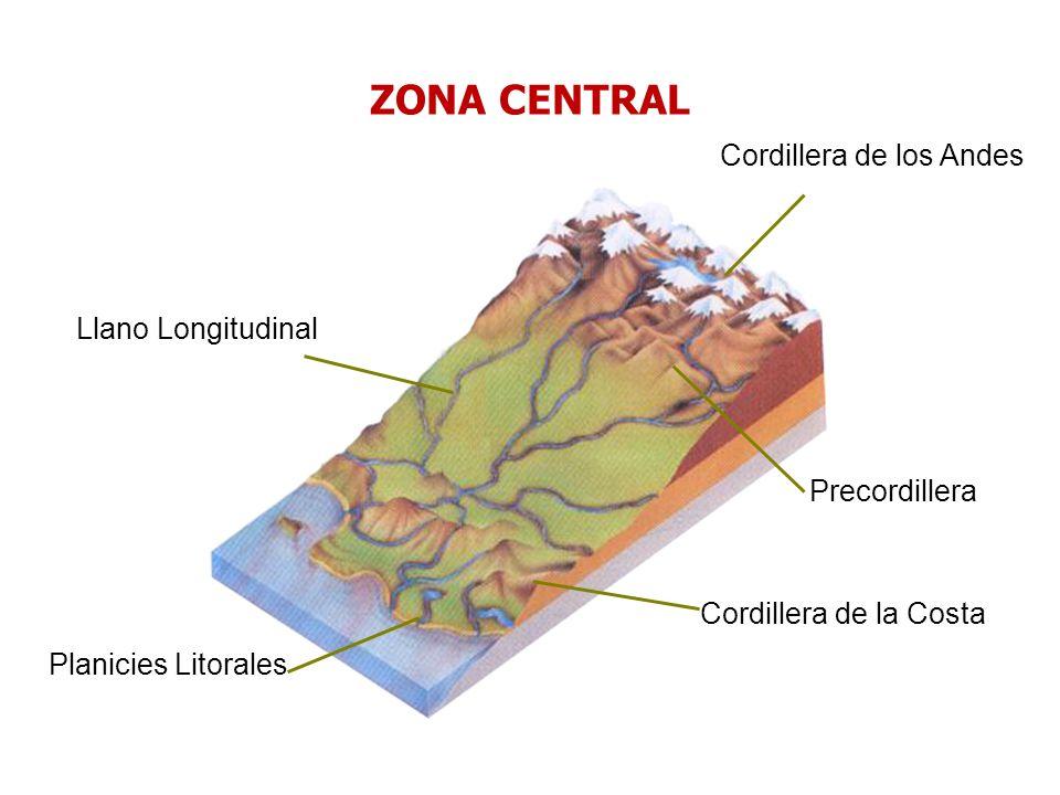 Cordillera de los Andes Llano Longitudinal Cordillera de la Costa Planicies Litorales Precordillera ZONA CENTRAL