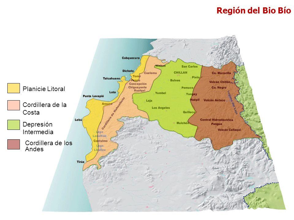 Planicie Litoral Cordillera de la Costa Depresión Intermedia Cordillera de los Andes Región del Bio Bío