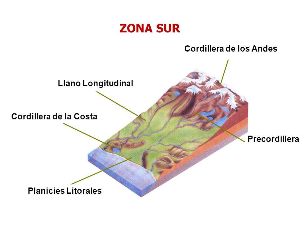 Cordillera de la Costa Planicies Litorales Cordillera de los Andes Llano Longitudinal Precordillera ZONA SUR