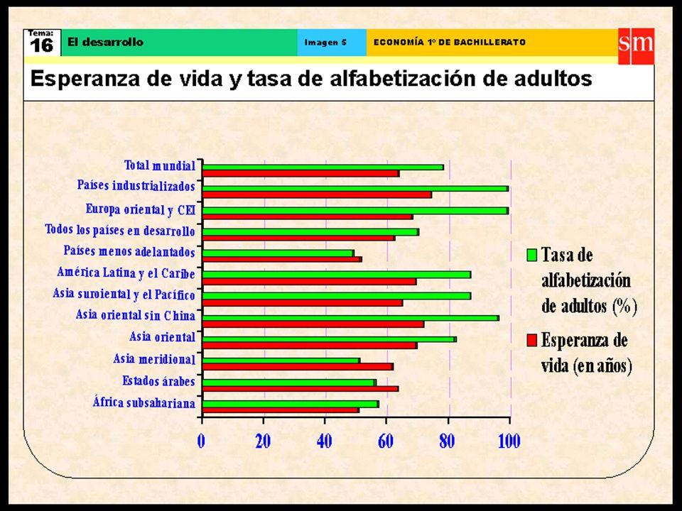 UN SISTEMA DE INDICADORES DEL NIVEL DE DESARROLLO 1. VITALES Expectativa media de vida Expectativa media de vida mortalidad infantil mortalidad infant
