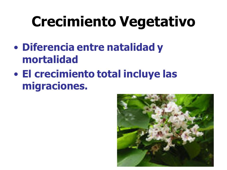 Crecimiento Vegetativo Diferencia entre natalidad y mortalidad El crecimiento total incluye las migraciones.