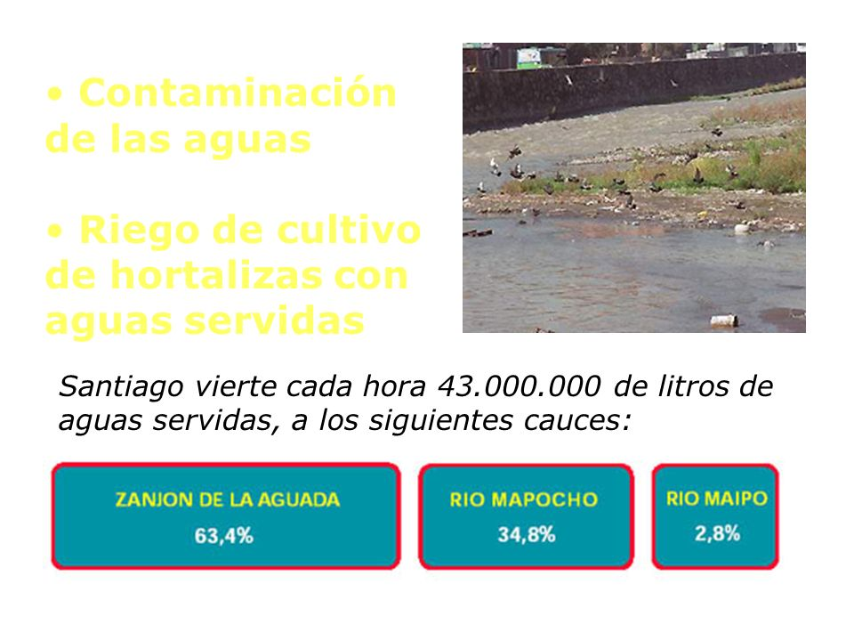 Santiago vierte cada hora 43.000.000 de litros de aguas servidas, a los siguientes cauces: Contaminación de las aguas Riego de cultivo de hortalizas c