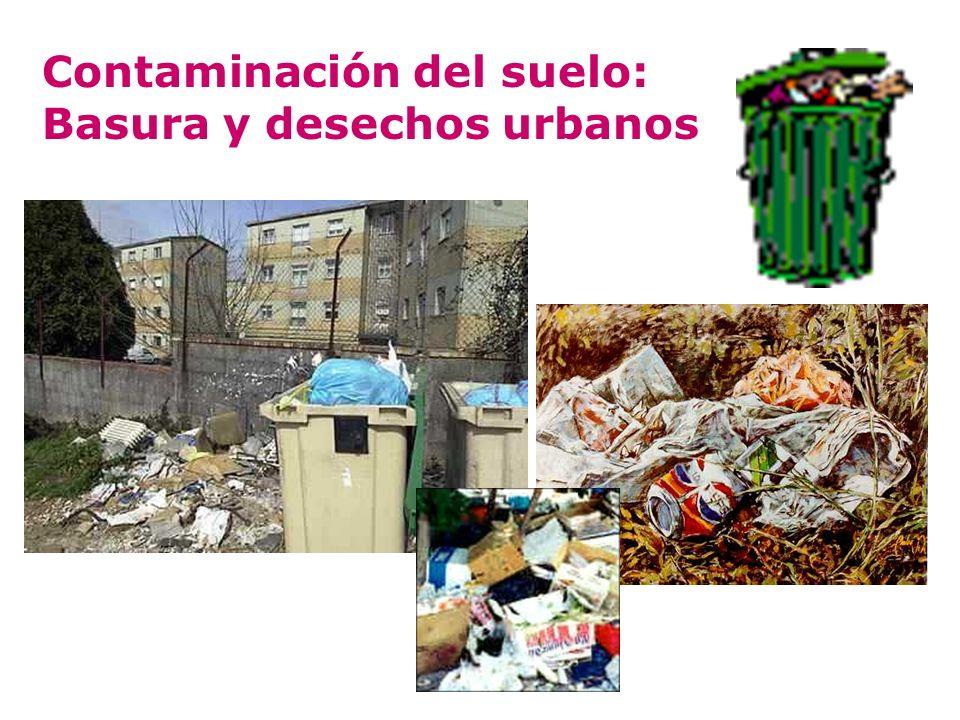 Contaminación del suelo: Basura y desechos urbanos