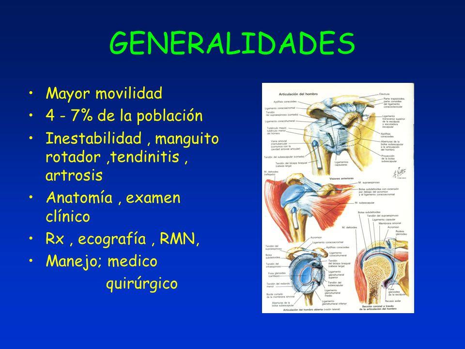 GENERALIDADES Mayor movilidad 4 - 7% de la población Inestabilidad, manguito rotador,tendinitis, artrosis Anatomía, examen clínico Rx, ecografía, RMN,