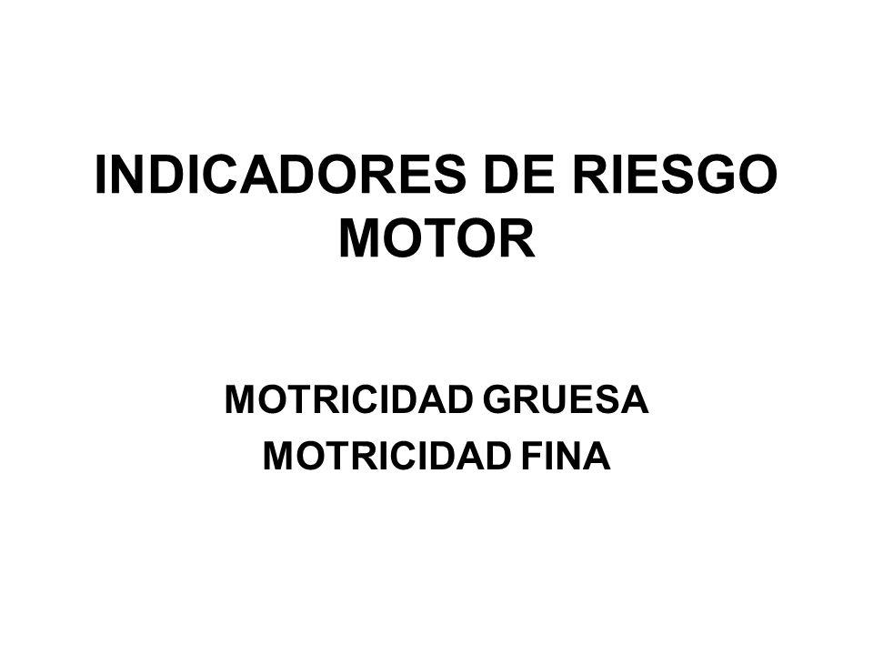 INDICADORES DE RIESGO MOTOR MOTRICIDAD GRUESA MOTRICIDAD FINA