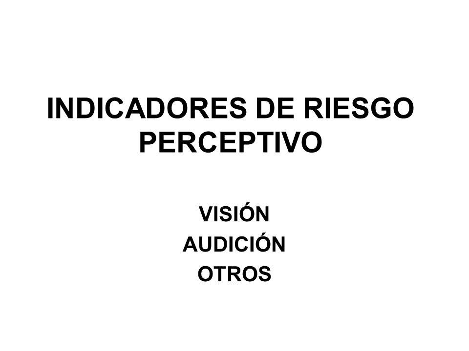INDICADORES DE RIESGO PERCEPTIVO VISIÓN AUDICIÓN OTROS