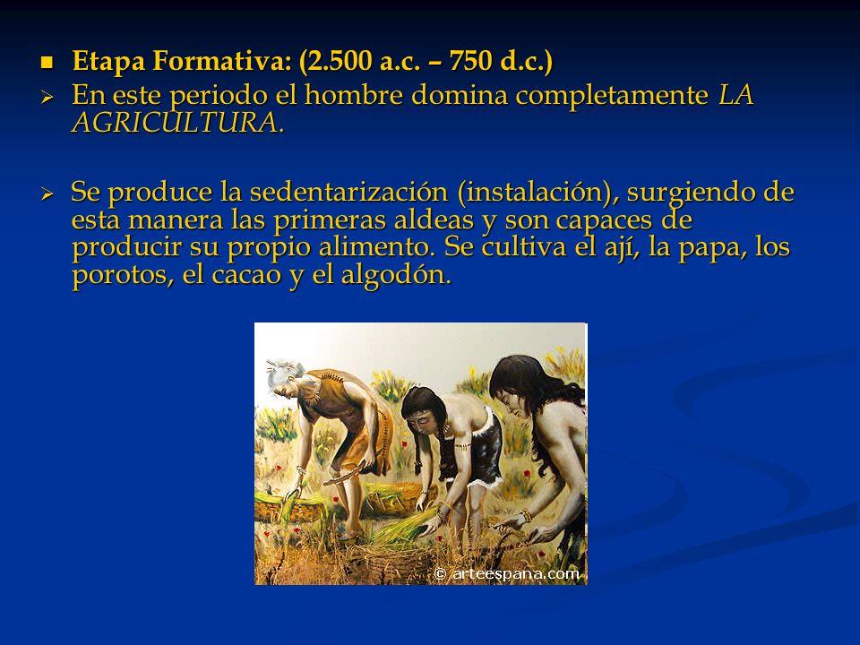 Etapa Formativa: (2.500 a.c. – 750 d.c.) Etapa Formativa: (2.500 a.c. – 750 d.c.) En este periodo el hombre domina completamente LA AGRICULTURA. En es