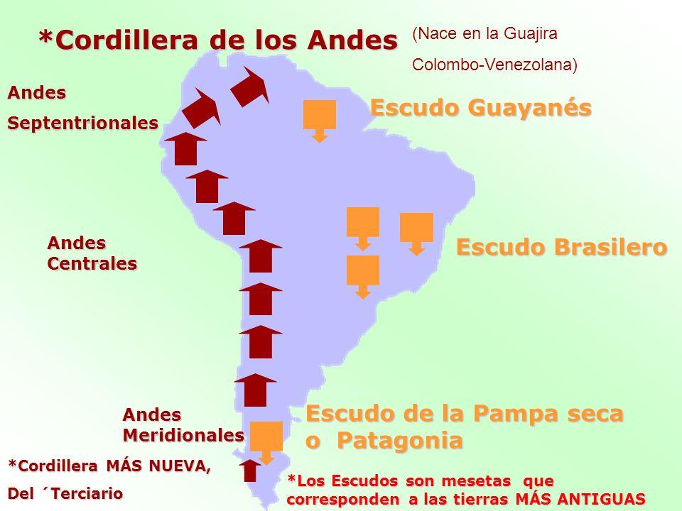 Escudo Guayanés Escudo Brasilero Escudo de la Pampa seca o Patagonia *Cordillera de los Andes (Nace en la Guajira Colombo-Venezolana) *Los Escudos son