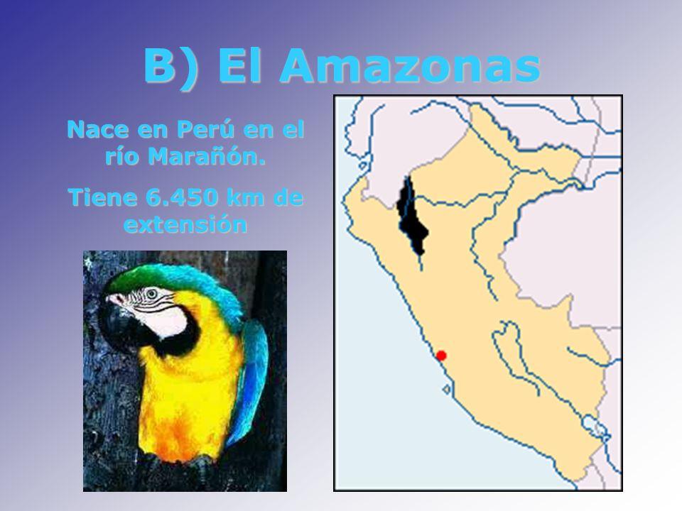 B) El Amazonas Nace en Perú en el río Marañón. Tiene 6.450 km de extensión