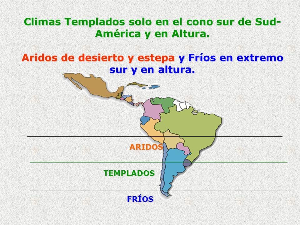Climas Templados solo en el cono sur de Sud- América y en Altura. Aridos de desierto y estepa y Fríos en extremo sur y en altura. ARIDOS TEMPLADOS FRÍ