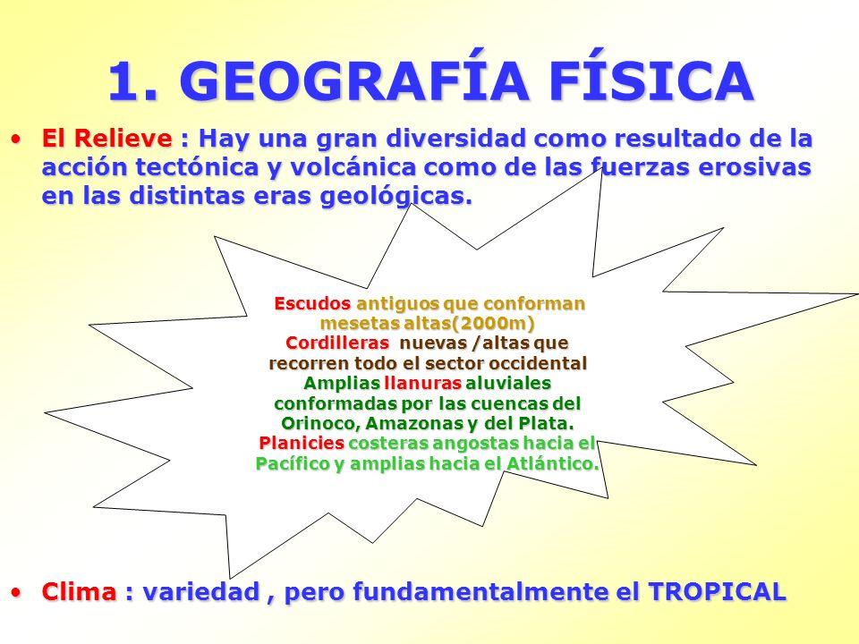 1. GEOGRAFÍA FÍSICA El Relieve : Hay una gran diversidad como resultado de la acción tectónica y volcánica como de las fuerzas erosivas en las distint