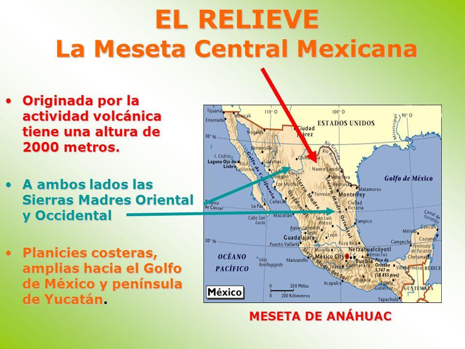 EL RELIEVE La Meseta Central Mexicana Originada por la actividad volcánica tiene una altura de 2000 metros.Originada por la actividad volcánica tiene