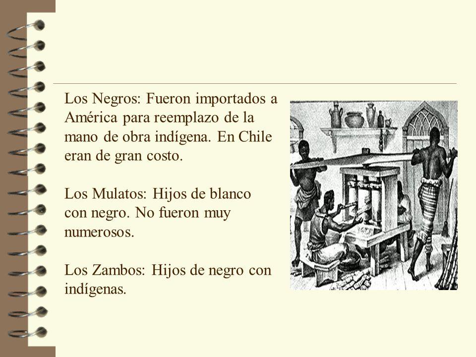 Los Negros: Fueron importados a América para reemplazo de la mano de obra indígena. En Chile eran de gran costo. Los Mulatos: Hijos de blanco con negr