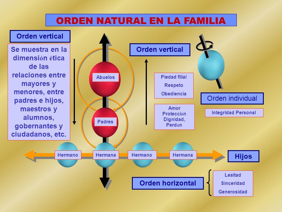 Orden vertical Orden individual Abuelos Padres Hijos Orden horizontal HermanoHermanaHermanoHermana ORDEN NATURAL EN LA FAMILIA Lealtad Sinceridad Gene