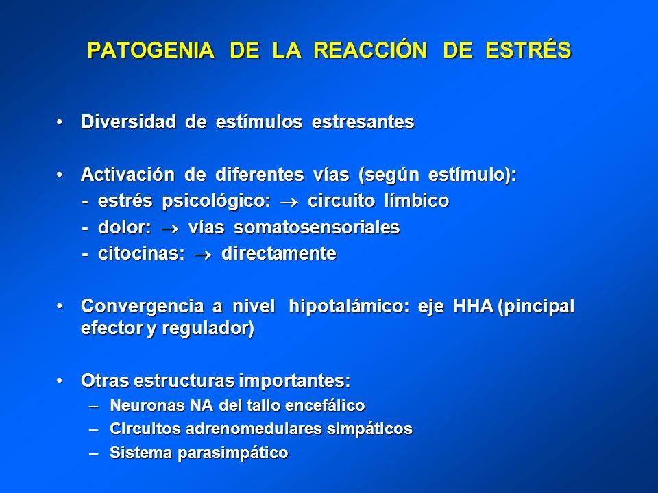 PATOGENIA DE LA REACCIÓN DE ESTRÉS Diversidad de estímulos estresantesDiversidad de estímulos estresantes Activación de diferentes vías (según estímul
