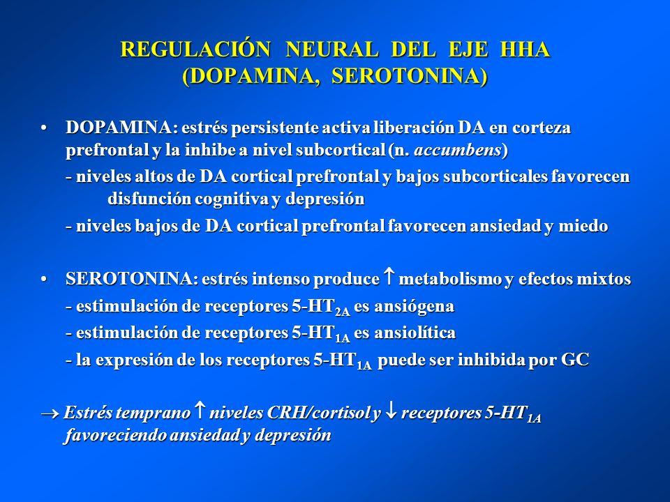 REGULACIÓN NEURAL DEL EJE HHA (DOPAMINA, SEROTONINA) DOPAMINA: estrés persistente activa liberación DA en corteza prefrontal y la inhibe a nivel subco