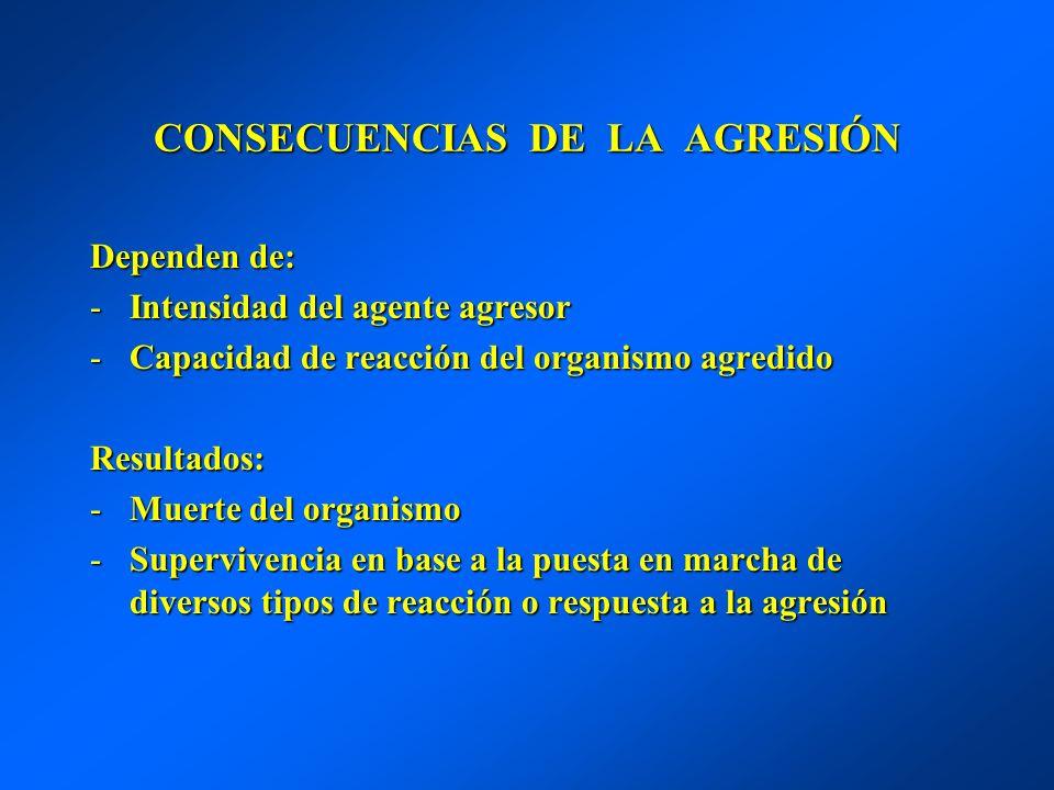CONSECUENCIAS DE LA AGRESIÓN Dependen de: -Intensidad del agente agresor -Capacidad de reacción del organismo agredido Resultados: -Muerte del organis
