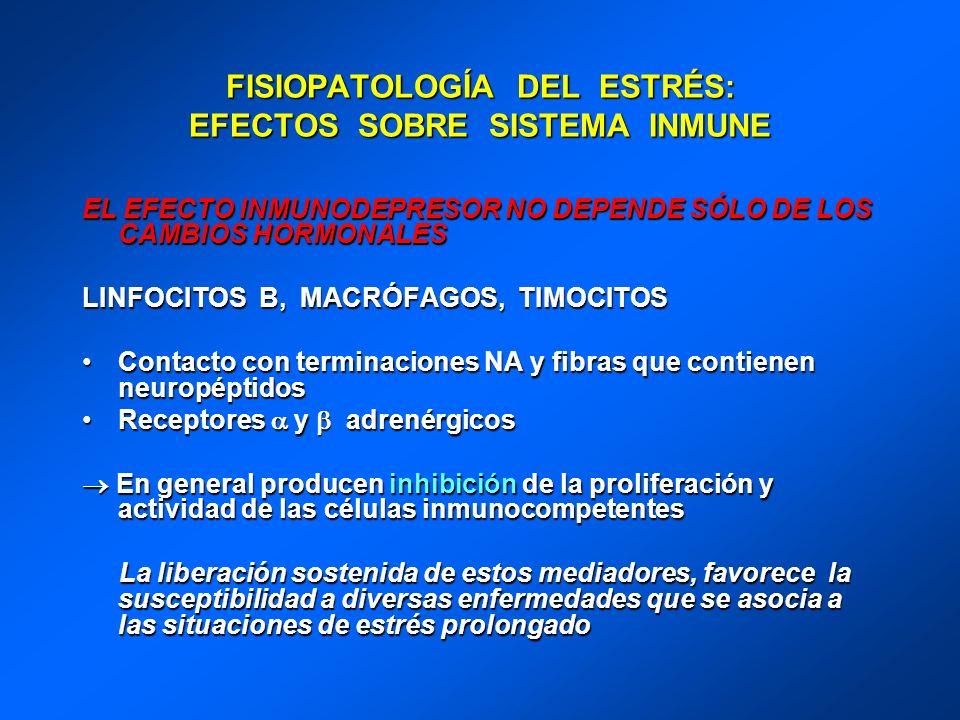 FISIOPATOLOGÍA DEL ESTRÉS: EFECTOS SOBRE SISTEMA INMUNE EL EFECTO INMUNODEPRESOR NO DEPENDE SÓLO DE LOS CAMBIOS HORMONALES LINFOCITOS B, MACRÓFAGOS, T