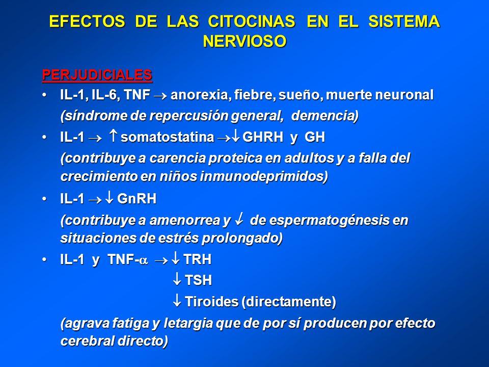 EFECTOS DE LAS CITOCINAS EN EL SISTEMA NERVIOSO PERJUDICIALES IL-1, IL-6, TNF anorexia, fiebre, sueño, muerte neuronalIL-1, IL-6, TNF anorexia, fiebre