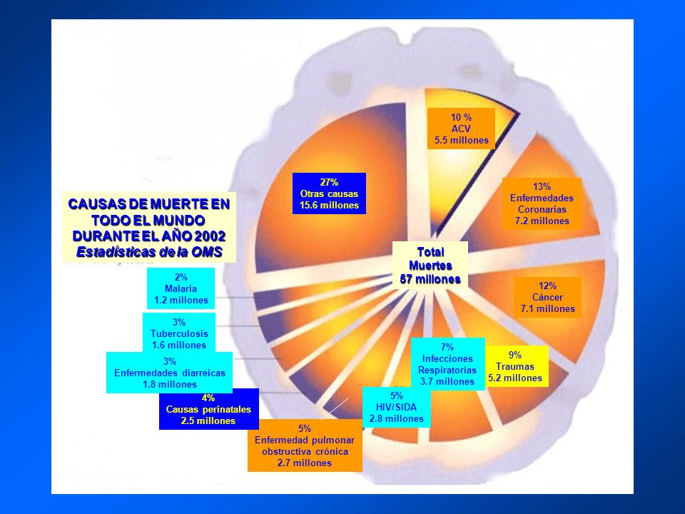 CAUSAS DE MUERTE EN TODO EL MUNDO DURANTE EL AÑO 2002 Estadísticas de la OMS 10 % ACV 5.5 millones 13% Enfermedades Coronarias 7.2 millones 12% Cáncer