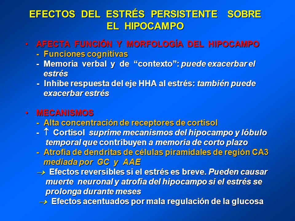 EFECTOS DEL ESTRÉS PERSISTENTE SOBRE EL HIPOCAMPO AFECTA FUNCIÓN Y MORFOLOGÍA DEL HIPOCAMPOAFECTA FUNCIÓN Y MORFOLOGÍA DEL HIPOCAMPO - Funciones cogni