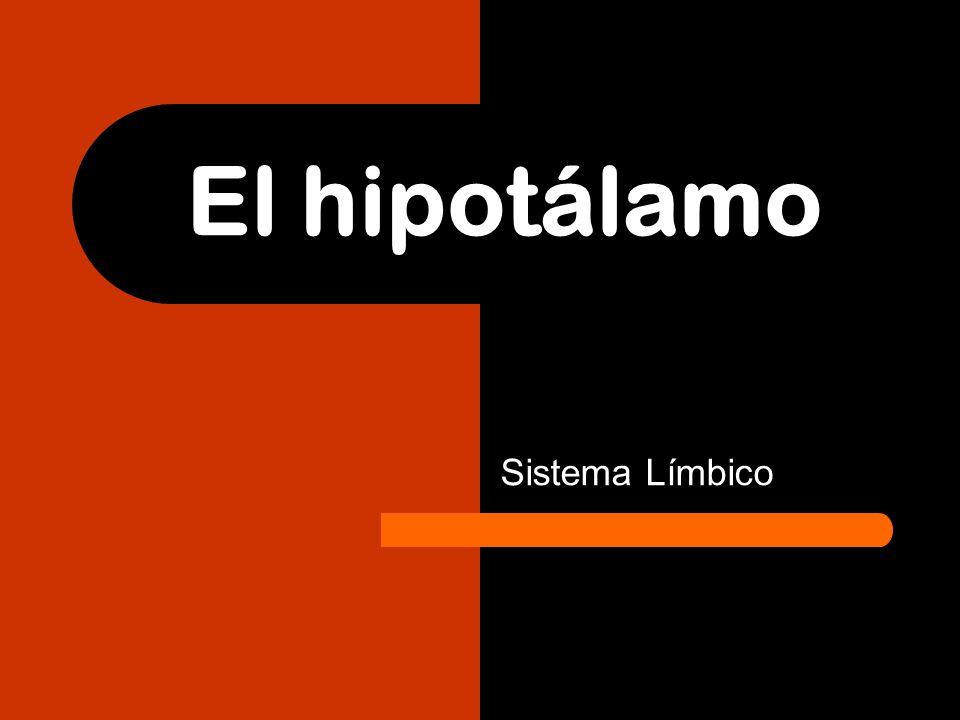 El hipotálamo Sistema Límbico