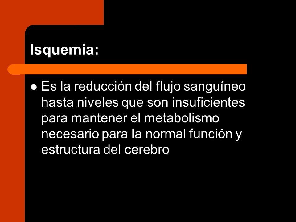 Isquemia: Es la reducción del flujo sanguíneo hasta niveles que son insuficientes para mantener el metabolismo necesario para la normal función y estr