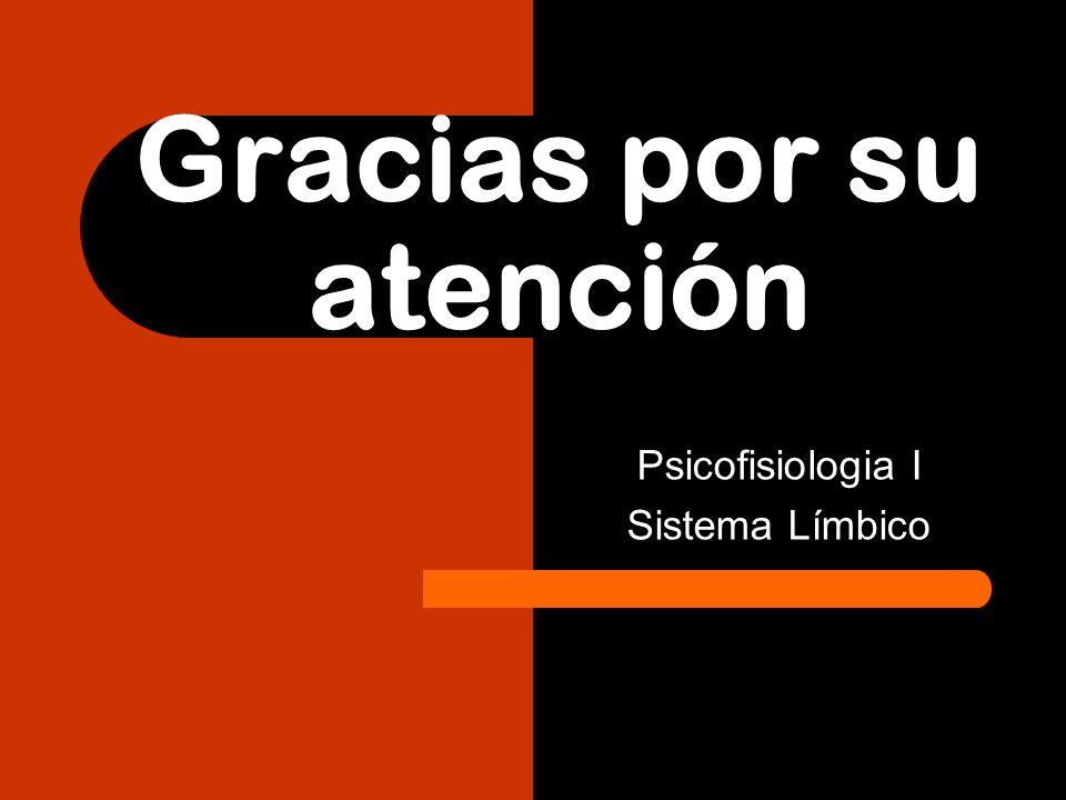 Gracias por su atención Psicofisiologia I Sistema Límbico
