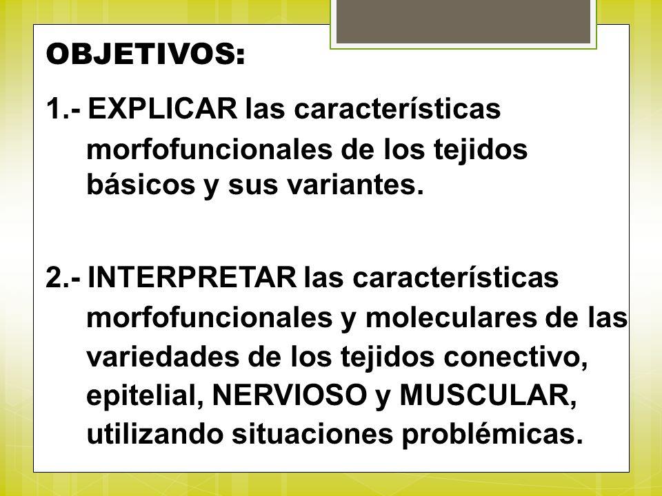 OBJETIVOS: 1.- EXPLICAR las características morfofuncionales de los tejidos básicos y sus variantes. 2.- INTERPRETAR las características morfofunciona