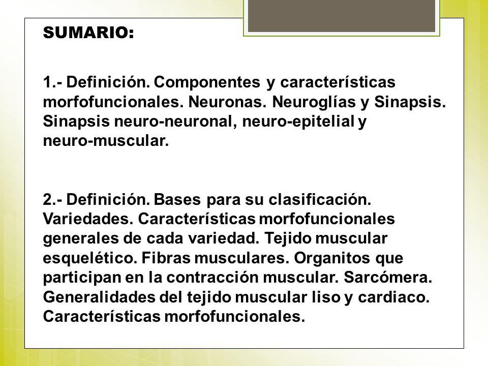 SUMARIO: 1.- Definición. Componentes y características morfofuncionales. Neuronas. Neuroglías y Sinapsis. Sinapsis neuro-neuronal, neuro-epitelial y n