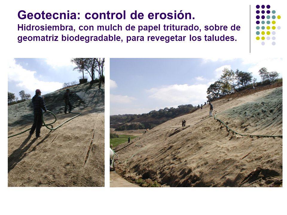 Geotecnia: control de erosión. Hidrosiembra, con mulch de papel triturado, sobre de geomatriz biodegradable, para revegetar los taludes.