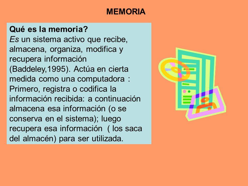 Qué es la memoria? Es un sistema activo que recibe, almacena, organiza, modifica y recupera información (Baddeley,1995). Actúa en cierta medida como u