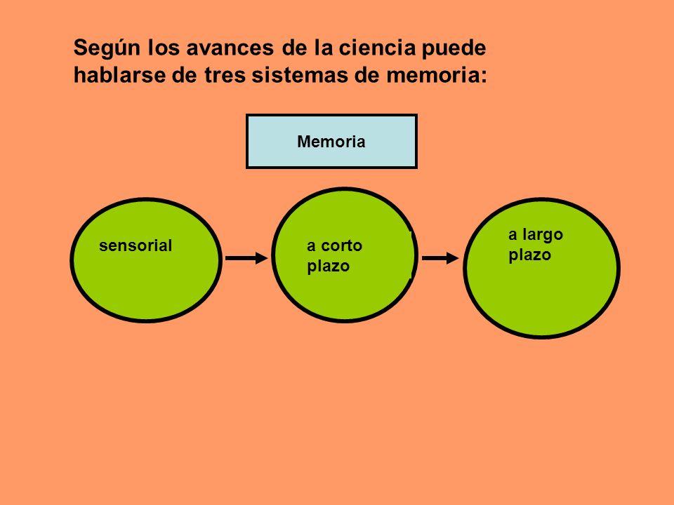 Memoria sensorial, es aquélla que retiene una copia exacta de lo que vivimos u oímos, por unos segundos o menos.