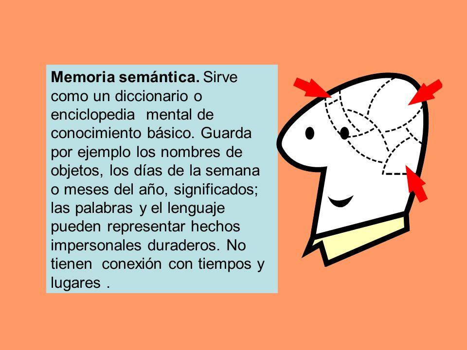 Memoria semántica. Sirve como un diccionario o enciclopedia mental de conocimiento básico. Guarda por ejemplo los nombres de objetos, los días de la s