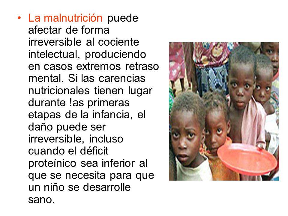 La malnutrición puede afectar de forma irreversible al cociente intelectual, produciendo en casos extremos retraso mental. Si las carencias nutriciona