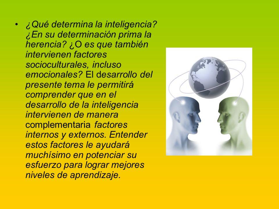 La sociedad y la cultura influyen en el desarrollo de la persona, y en el de su capacidad intelectual.