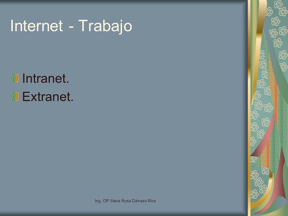 Ing. CIP Maria Rosa Dámaso Ríos Internet - Trabajo Intranet. Extranet.