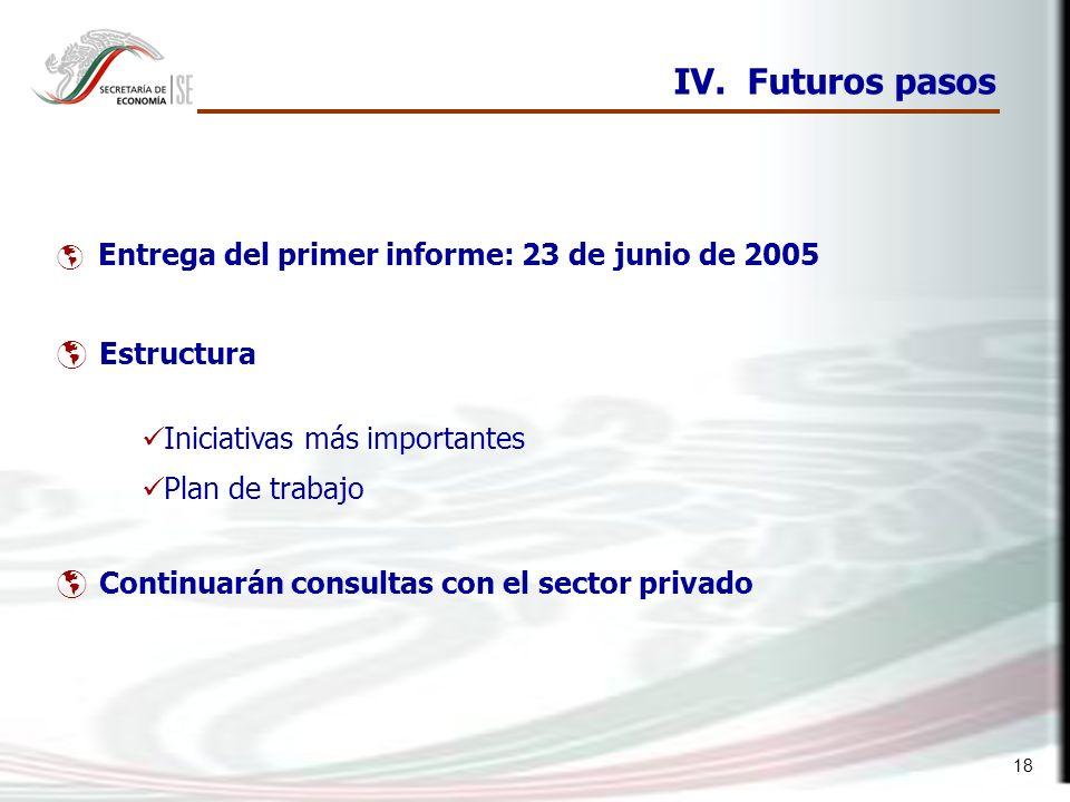 18 IV. Futuros pasos Entrega del primer informe: 23 de junio de 2005 Estructura Iniciativas más importantes Plan de trabajo Continuarán consultas con