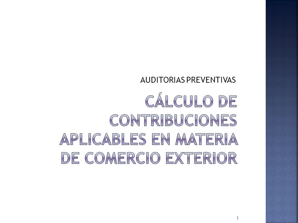 AUDITORIAS PREVENTIVAS 1