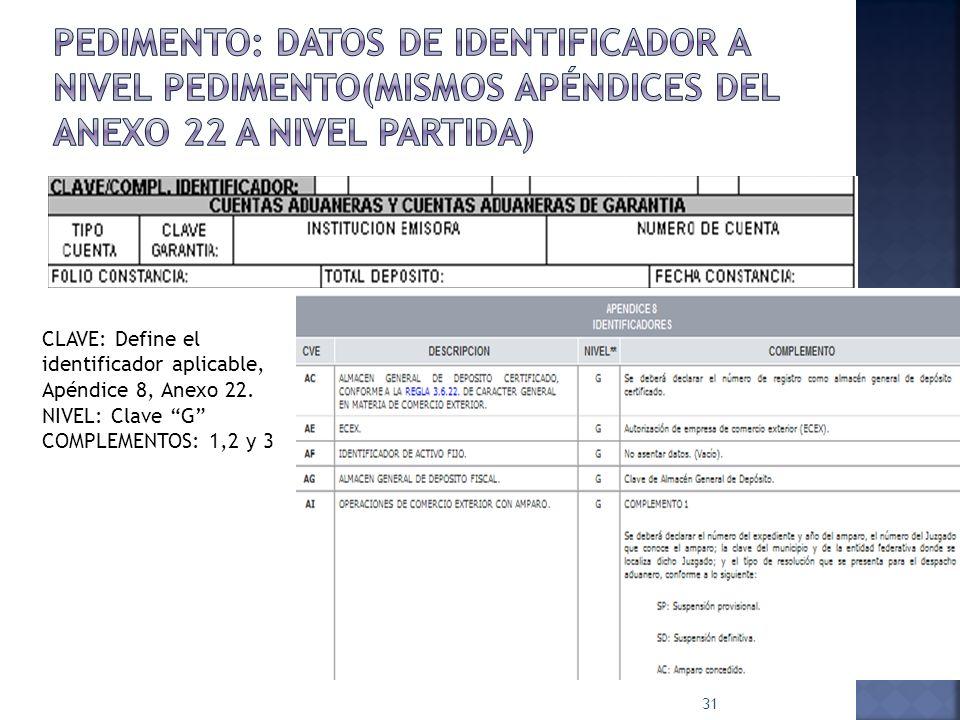 31 CLAVE: Define el identificador aplicable, Apéndice 8, Anexo 22. NIVEL: Clave G COMPLEMENTOS: 1,2 y 3