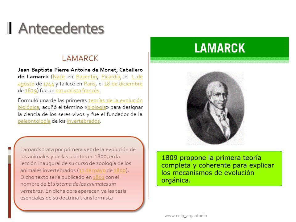 Antecedentes LAMARCK Jean-Baptiste-Pierre-Antoine de Monet, Caballero de Lamarck (Nace en Bazentin, Picardía, el 1 de agosto de 1744 y fallece en Parí